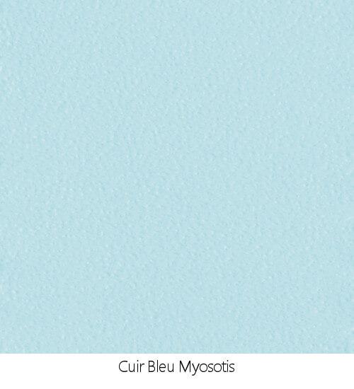 2-BleuMyosotis.jpg